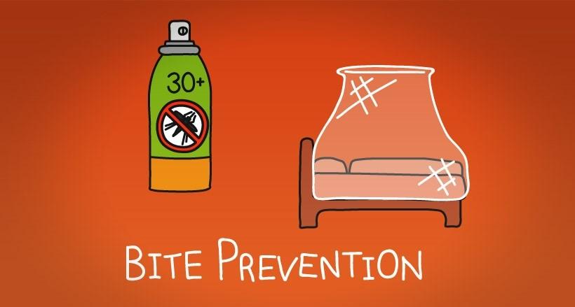 Bite Prevention